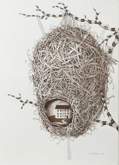 Sarah-pratt_away_nest-II_ink-and-gouache