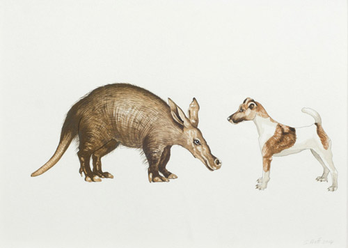 Sarah-pratt_away_untitled_aardvark-and-jack-russel_gouache-and-ink-on-paper