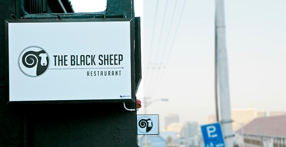 The Cat is Ginger_Black Sheep